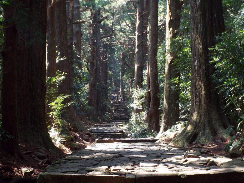 Nachikatsuura - Daimonzaka