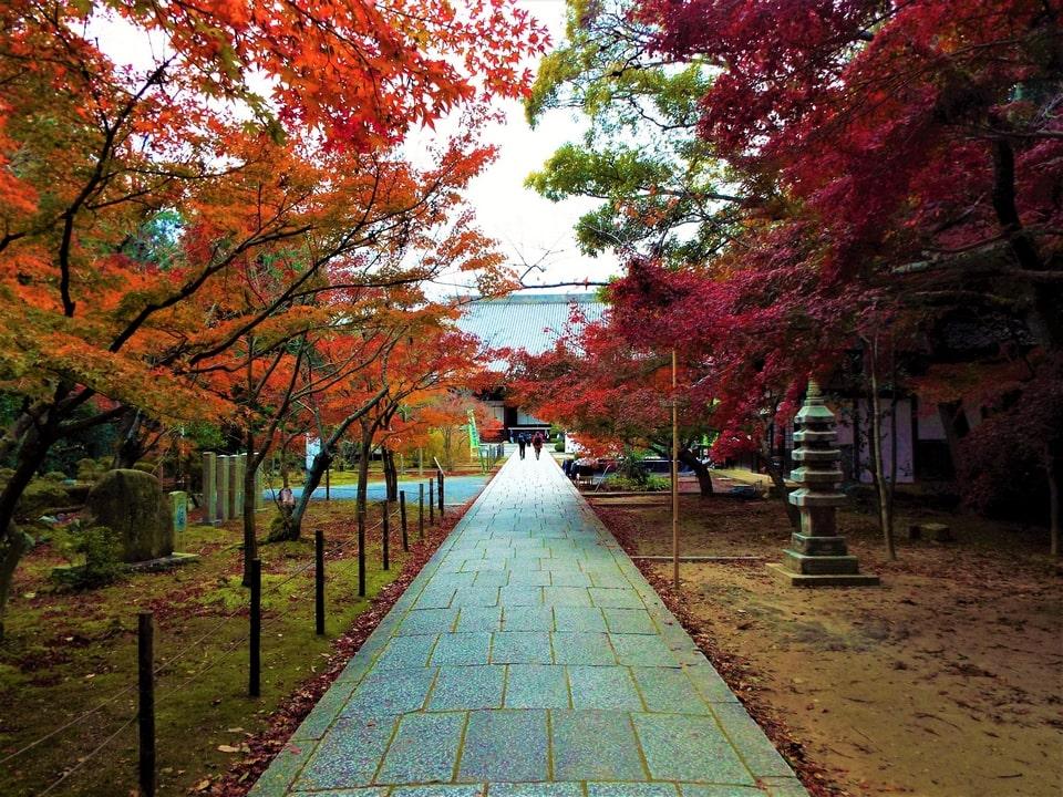 Nagaokakyō – Kōmyō-ji