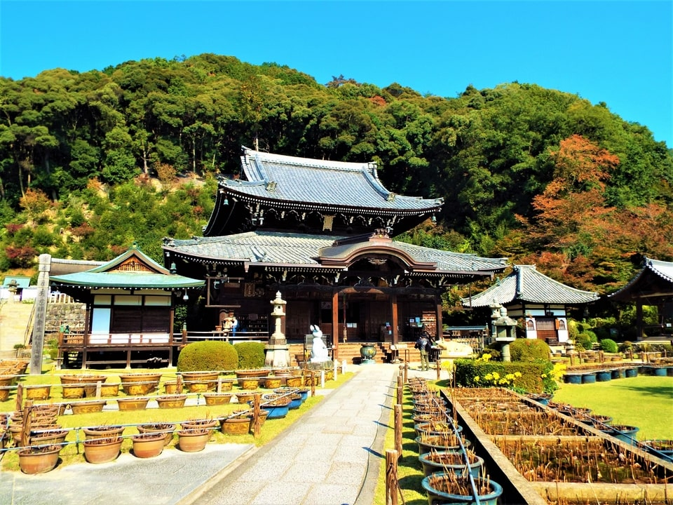 Uji – Mimuroto-ji