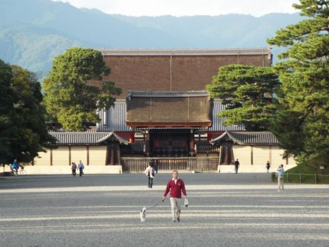 Aperçu du palais impérial Kyōto-gosho